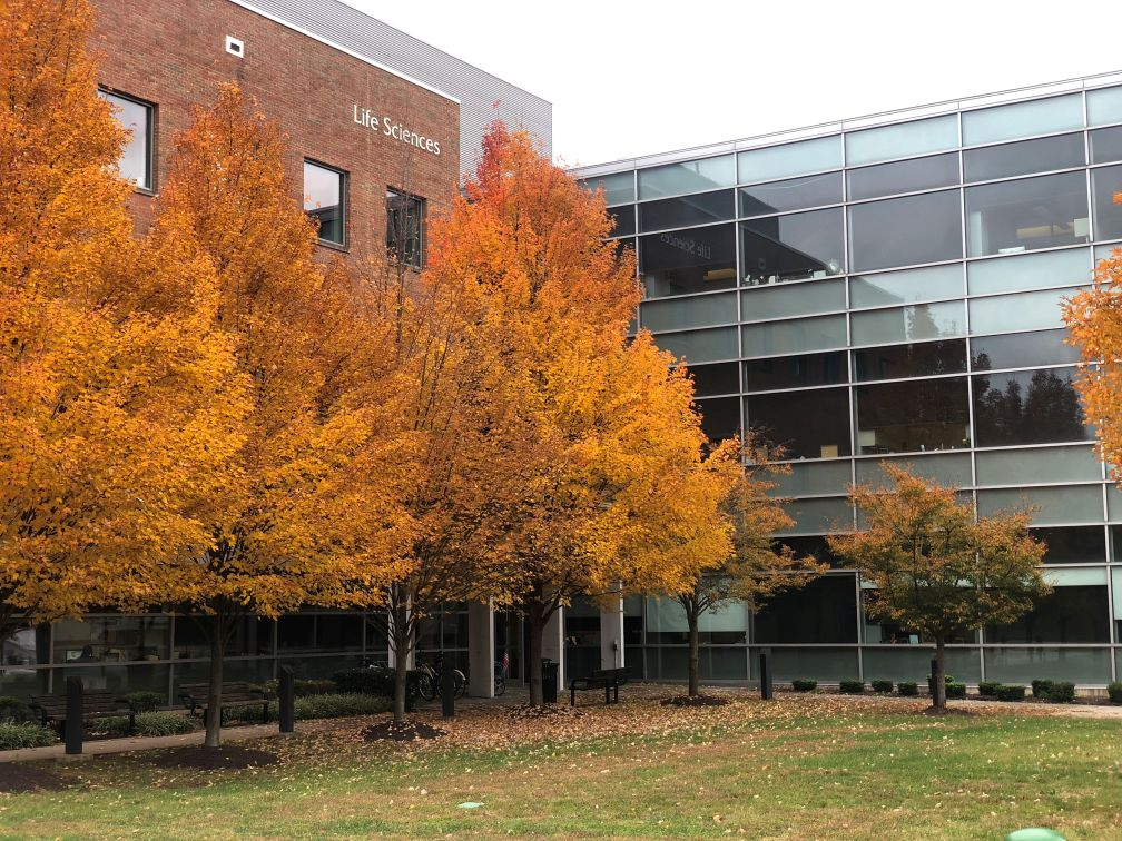 LifeScienceBuilding Fall